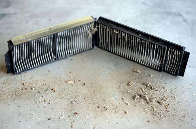 Вот так выглядит старый салонный фильтр